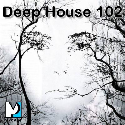 Deep house 103