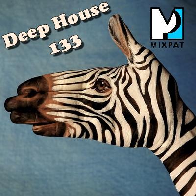 Deep house 133