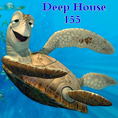 Deep house 155