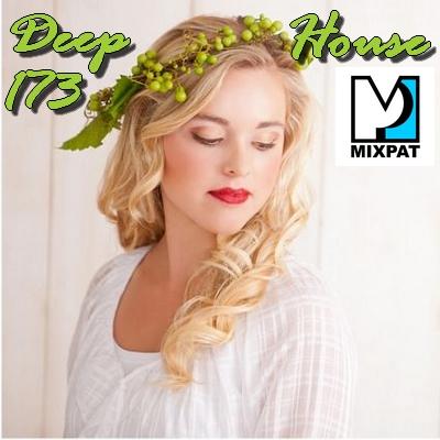 Deep house 173