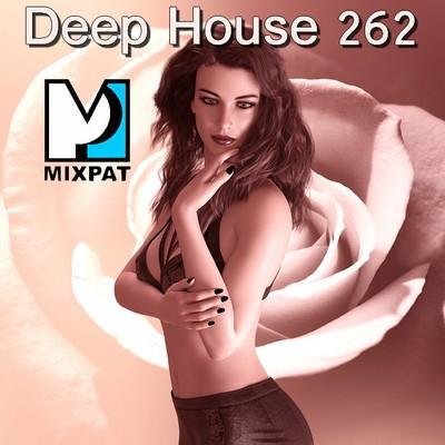 Deep house 262